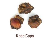 Knee Caps s/w