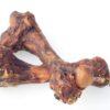 Porky Femur Bone