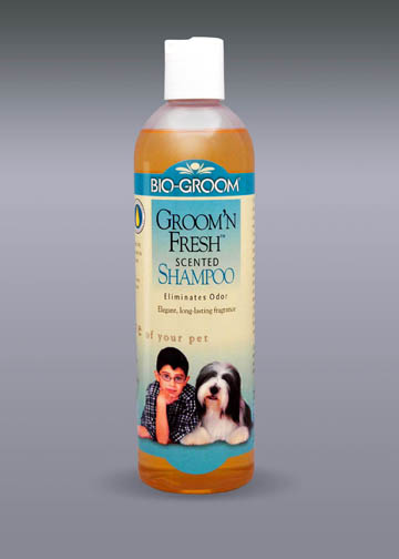 Groom N Fresh Shampoo 12oz
